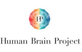 Human Brain Project: El esfuerzo en conjunto de 80 Universidades y miles de científicos