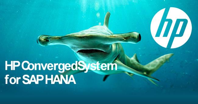 #HP ConvergedSystem, equipos optimizados para procesar SAP HANA con gran performance
