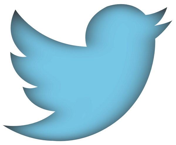 twitter-new-bird