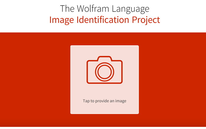 the-wolfram-language-image-identification-project