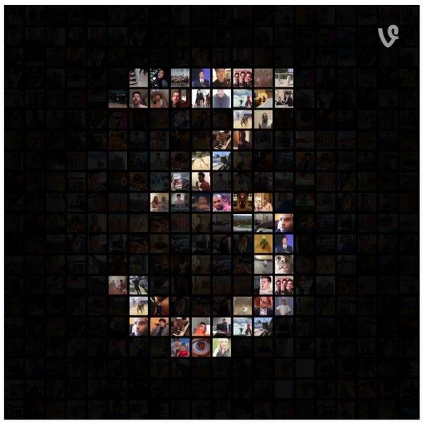 vine-3-years