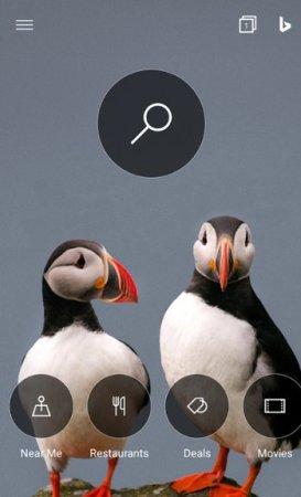 Microsoft Bing para Android