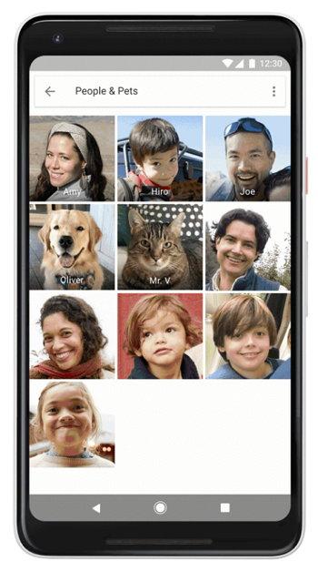 Google Photo - Mascotas - Perros y Gatos