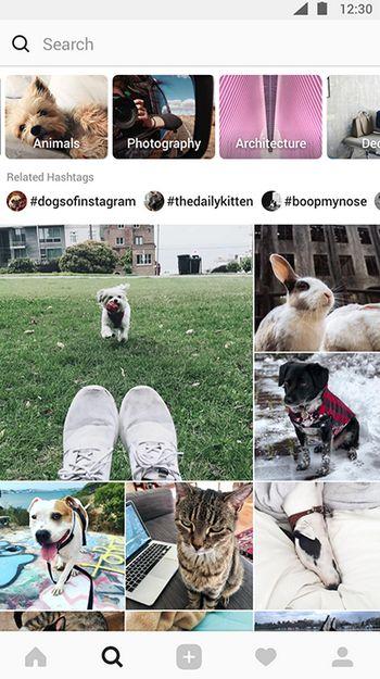 Instagram Explorar