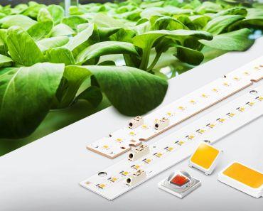 Samsung LED rojo Horticultura