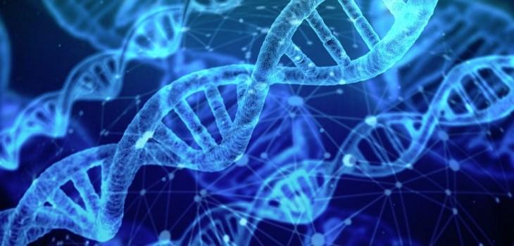 HPE collaborará con Jungla para acelerar la claridad y utilidad de análisis clínicos genéticos #HPEDiscover 1