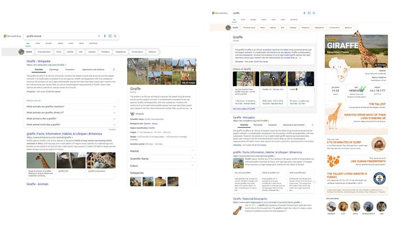 Microsoft Bing - Infografías