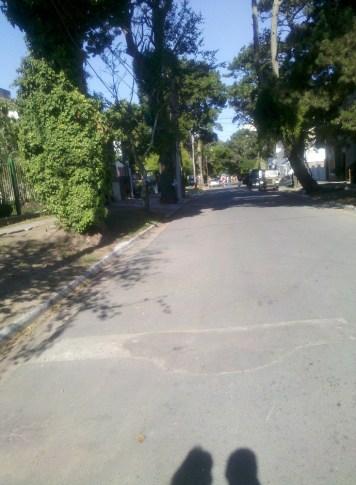 IMG_20120116_171331