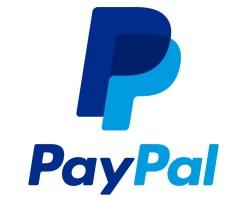Paypal-Logo-480x388 paypal使っとる奴おる?