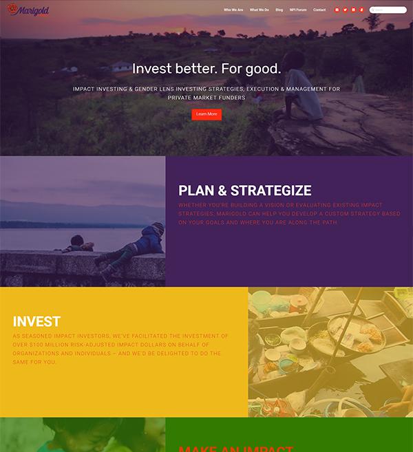 Marigold Capital Website
