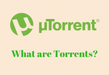What are Torrents