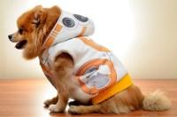 Star Wars Droid Dog Costumes