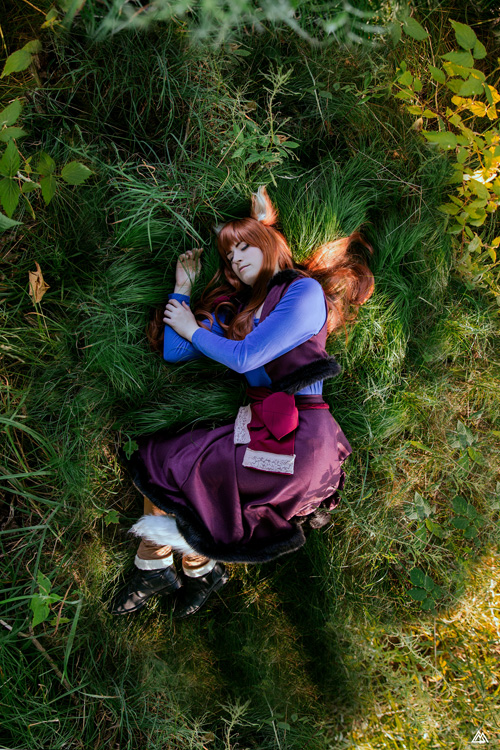 Holo from Spice and Wolf Cosplay