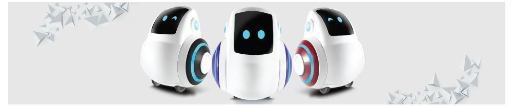 Miko Robot Features