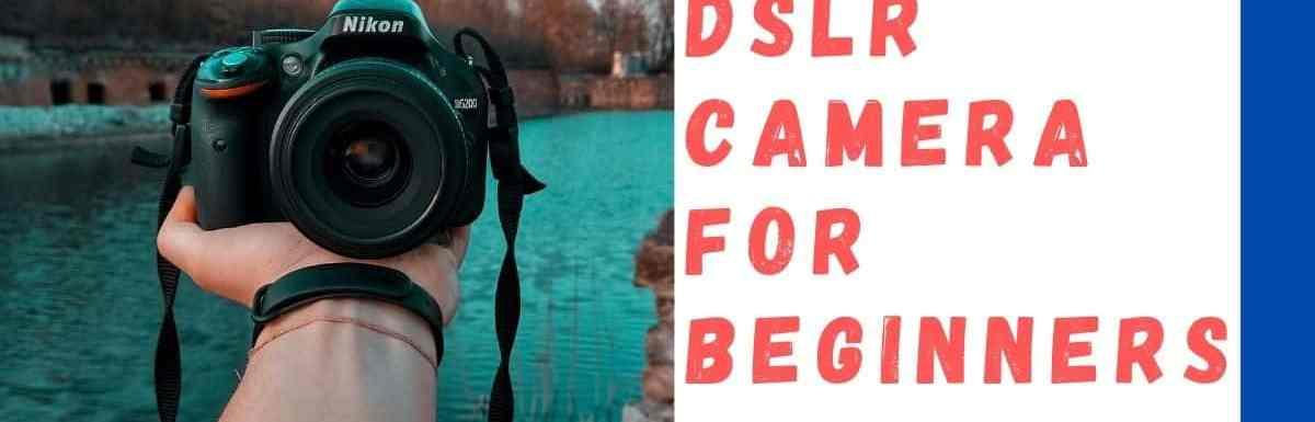 Top 7 Finest DSLR Cameras for Beginners