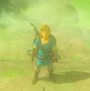 Zelda capture, a greenish color with Link standing in the middle, his bow and shield on his back