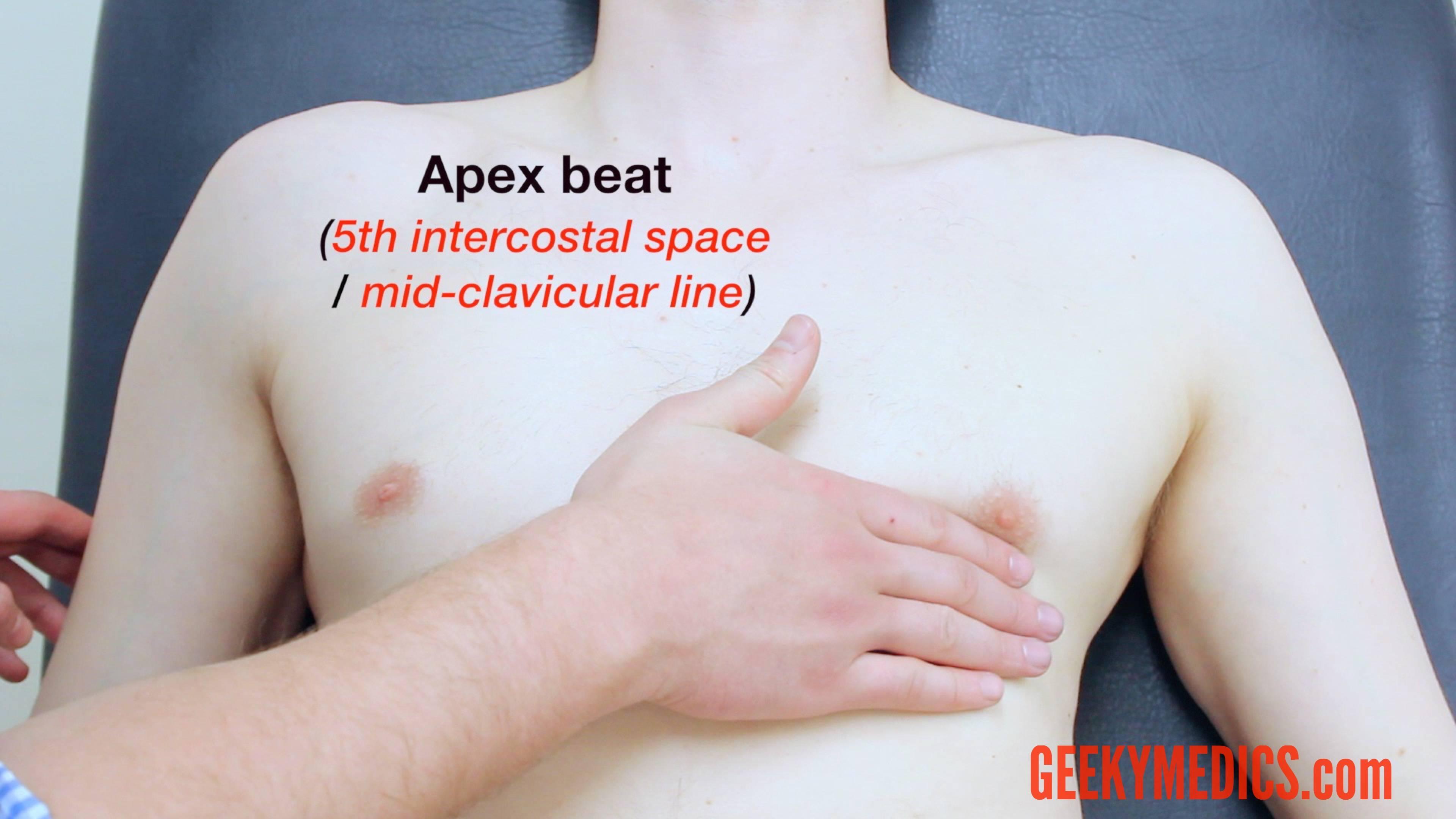 Respiratory examination  OSCE Guide  Geeky Medics