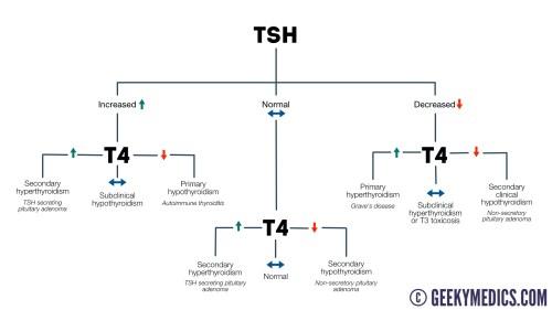 small resolution of tft interpretation flow chart thyroid function interpretation flow chart