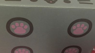 Pusheen, Pusheen Box, Spring Pusheen Box, Monthly Pusheen Box, Quarterly Pusheen Box, Pusheen Box Video, Pusheen Box Review, Pusheen Box Photos, Pusheen Box Pictures, Box Opening, Pusheen Box Opening, Monthly Subscription Box, Quarterly Subscription Box, Cute, Kawaii, Kawaii Subscription Box, Cute Subscription Box, Anime Subscription Box, Geek Subscription Box, Subscription Boxes For Geek Girls, Unboxing, Pusheen Unboxing