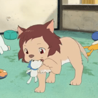 Wolf Children - Anime Review - Feature Length Anime Movie - Anime Film - Family Film