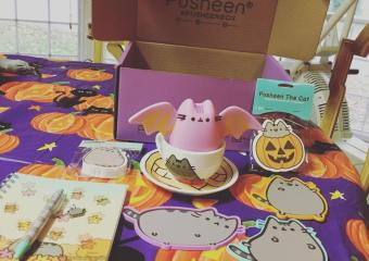 Pusheen Box Fall 2016 Halloween Box Opening