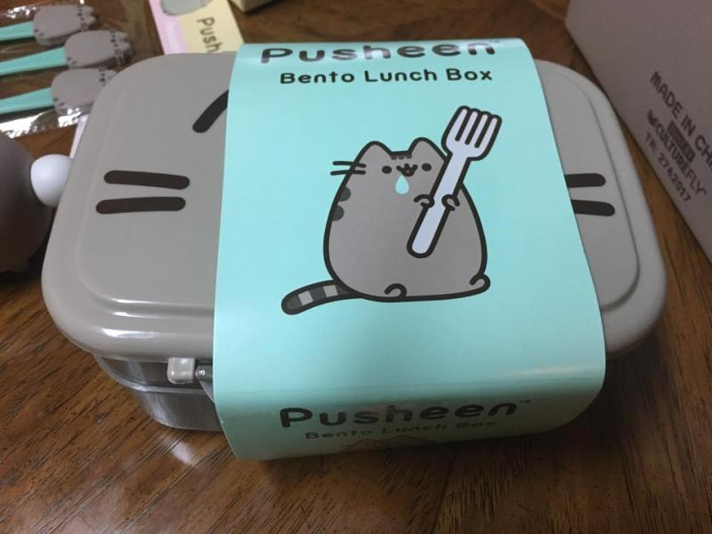 Spring 2017 Pusheen Subscription Box