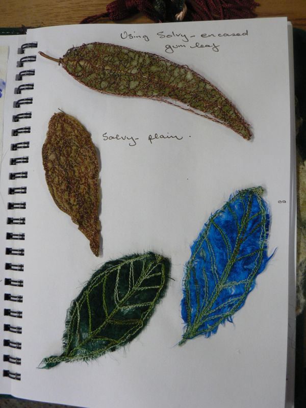 solvy leaves