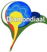 Zelf-georganiseerd dorp Diamondiaal wordt ontruimd