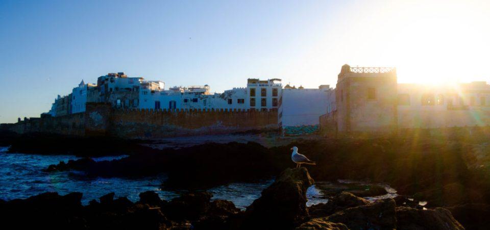 maroc may 2016