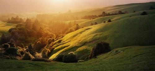 Bolinas Ridge © Keehn Gray