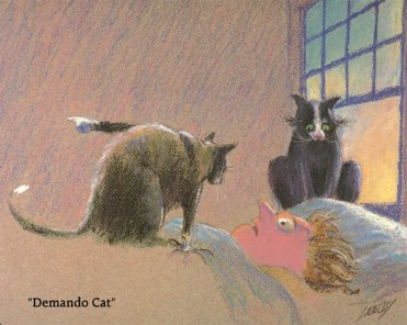 Demando Cat