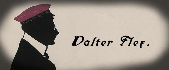 Walter Flex: Lebensbild eines Dichters und Offiziers