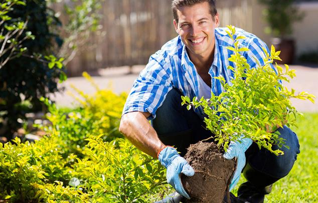 Gibt es einen Allergen freier Garten