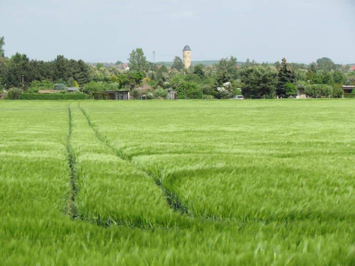 Blick nach Böhlitz-Ehrenberg