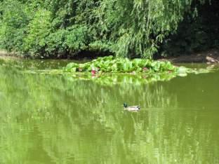 Stünzer Park