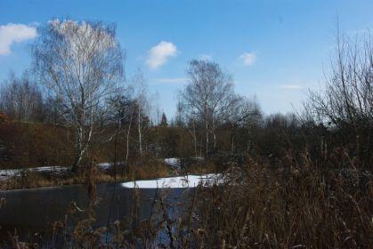 Die Schönauer Lachen haben auch im Winter ihren Reiz