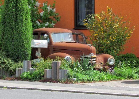 Gartenratte in Bennewitz