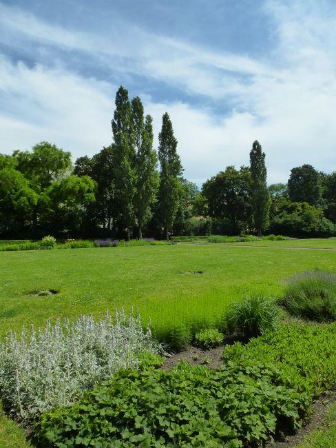 Im Mariannenpark / Schönefelder Volkspark