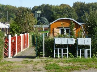 Im Gartenverein Grüne Aue