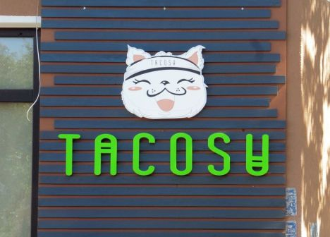 Katze in der Mockauer Straße