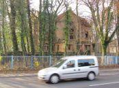Hans-Driesch-Straße 17