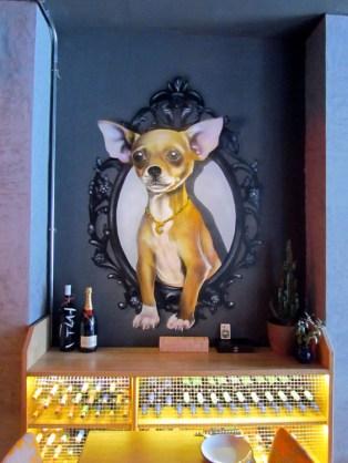 Kleiner Hund im Gallo Negro