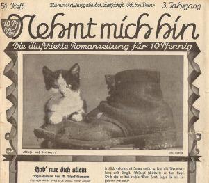 """""""Nehmt mich hin"""", Romanzeitung aus Leipzig"""