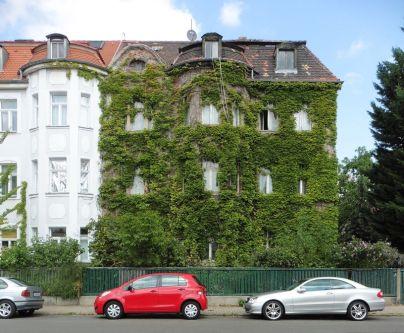 Grüne Wand in Böhlitz-Ehrenberg