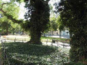 Blick zum Dolz-Plato-Denkmal
