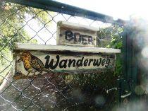 Wanderweg in Sellerhausen