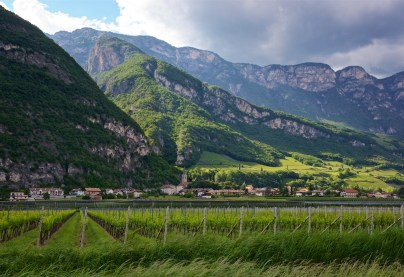 Das Weingut in Südtirol Foto: John McDermott