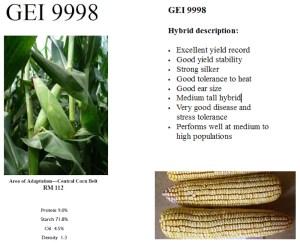 GEI 9998 Hybrid Description