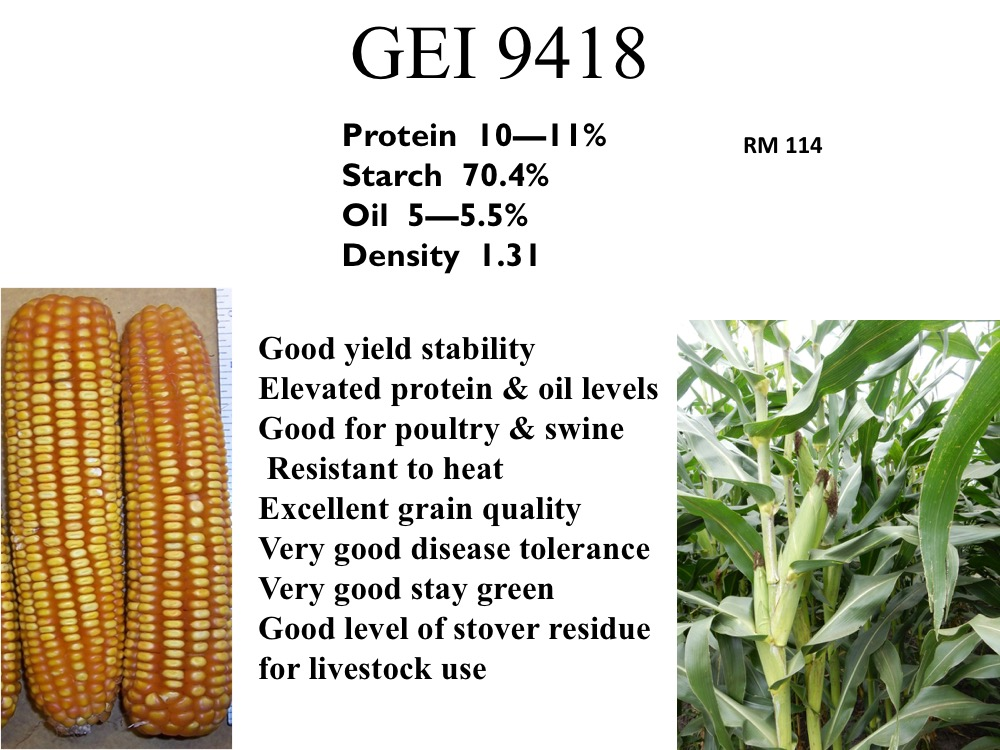 gei-9418
