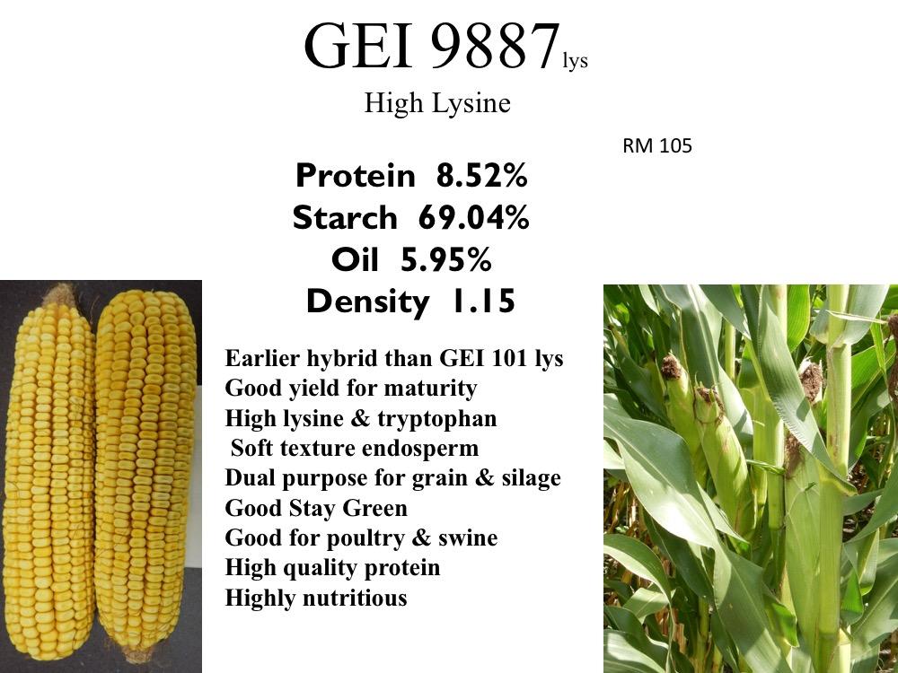 gei-9887-lys